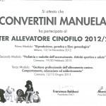 masterconvertini0001